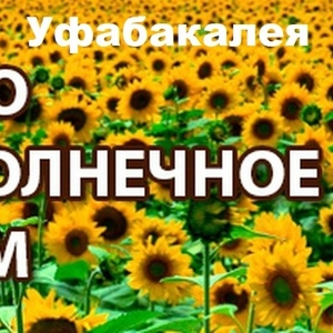 Дешево Масло Оптом Подсолнечное